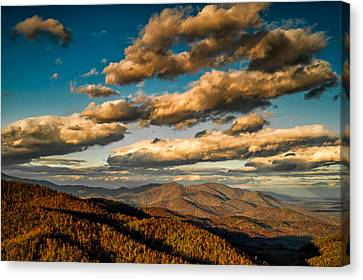 Canvas Print featuring the photograph Reaching For The Light by Joye Ardyn Durham