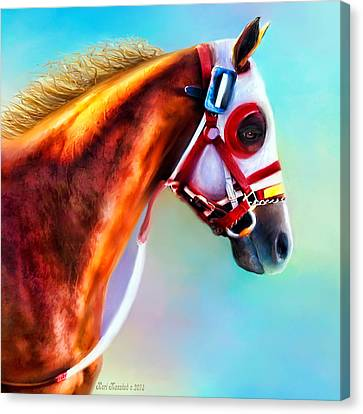 Ready To Race Canvas Print by Kari Nanstad