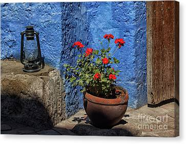Canvas Print featuring the photograph Red Geranium Near A Blue Wall by Patricia Hofmeester
