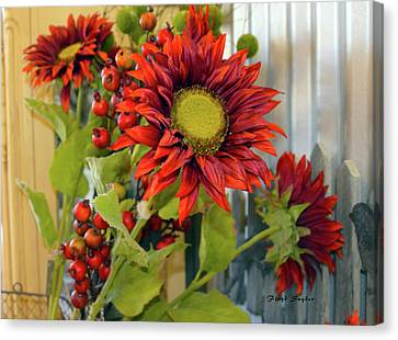 Red Sunflower Large Canvas Print by Floyd Snyder