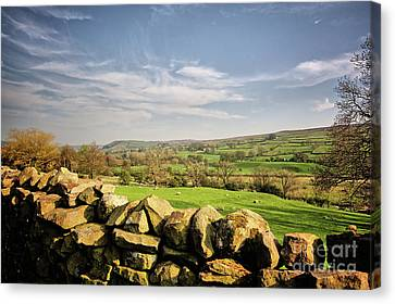 Reeth Views Canvas Print by Nichola Denny