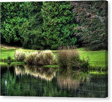 Canvas Print featuring the photograph Reflected by Gouzel -