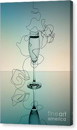 Reflection Canvas Print by Nailia Schwarz