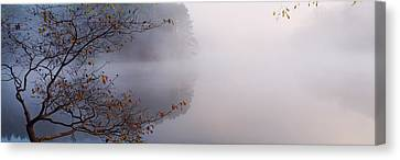 Reflection Of Trees In A Lake, Lake Canvas Print