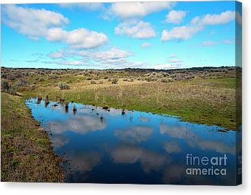Canvas Print featuring the photograph Reflections Of Spring by Mike Dawson