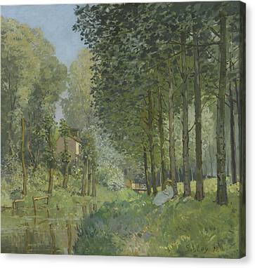 Rest Along The Stream  Canvas Print by Alfred Sisley
