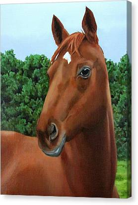Retired Racer Canvas Print by Sandra Chase