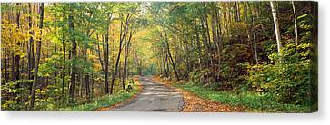 Road Passing Through Autumn Forest Canvas Print by Panoramic Images