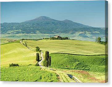 Road To Terrapille Canvas Print by Michael Blanchette