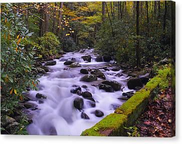 Gatlinburg Tennessee Canvas Print - Roaring Fork Crossing by Dennis Nelson