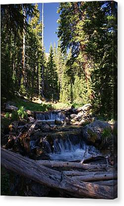 Rocky Mountain Summer Canvas Print