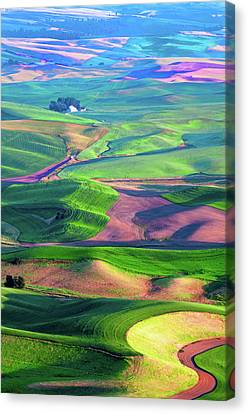 Green Hills Of The Palouse Canvas Print by James Hammond