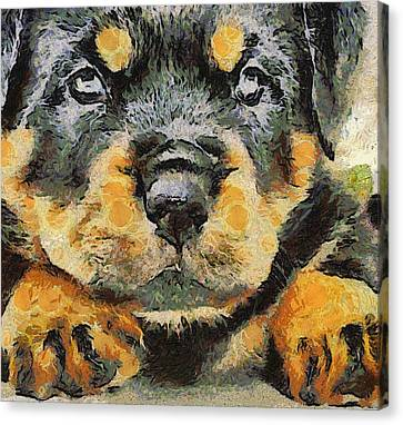 Rottweiler Puppy Portrait Canvas Print