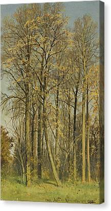 Rowan Trees In Autumn Canvas Print