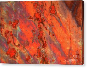 Rust Abstract Canvas Print by Carol Groenen