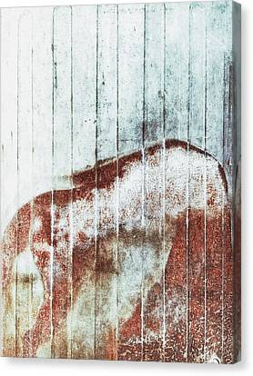 Rusty Metal Background  Canvas Print by Tom Gowanlock