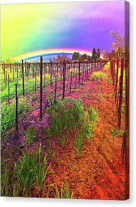 Canvas Print - Rutherford Rainbow by Cadence Spalding
