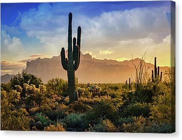 Canvas Print featuring the photograph Saguaro Sunrise In The Superstitions  by Saija Lehtonen