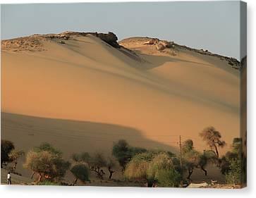 Sahara Canvas Print by Silvia Bruno