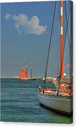 Sailing On Boston Harbor Canvas Print
