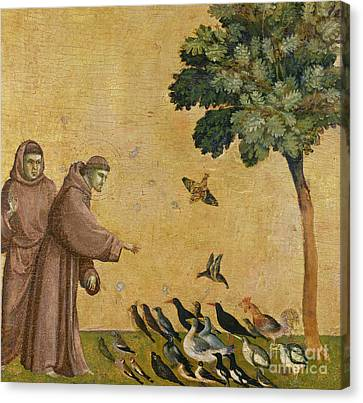 Saint Francis Of Assisi Preaching To The Birds Canvas Print by Giotto di Bondone