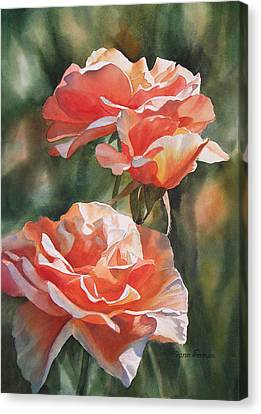 Salmon Colored Roses Canvas Print