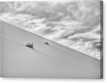 Canvas Print featuring the photograph Sand And Clouds by Hitendra SINKAR