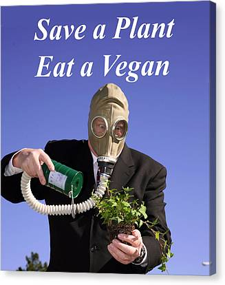 Save A Plant Eat A Vegan Canvas Print by Michael Ledray