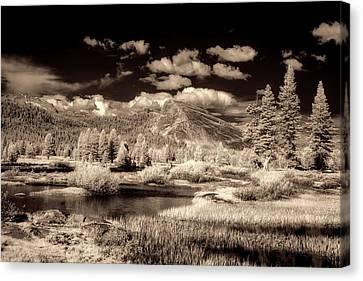 Surreal Infrared Sepia Nature Canvas Print - Scenic Yosemite by Mountain Dreams