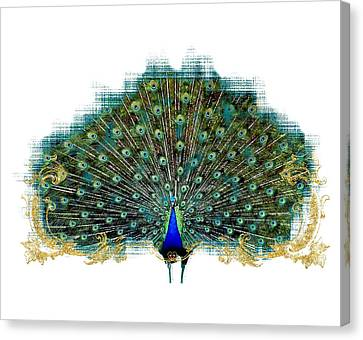 Scroll Swirl Art Deco Nouveau Peacock W Tail Feathers Spread Canvas Print
