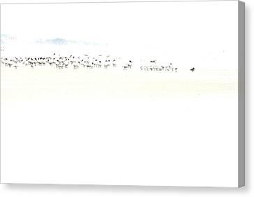 Beach Theme Decorating Canvas Print - High Key Shorebirds by Angela Rath
