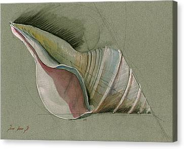 Seashell Art Painting Canvas Print by Juan  Bosco