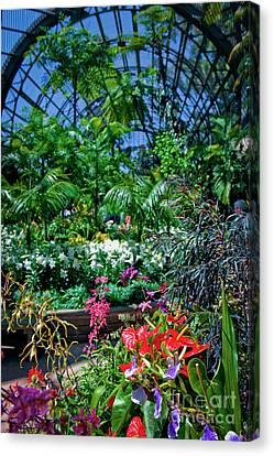 Secret Garden Canvas Print by David Zanzinger