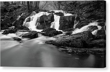 Selkefall, Harz Canvas Print by Andreas Levi