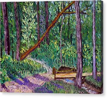 Sewp Trail Bridge Canvas Print by Stan Hamilton