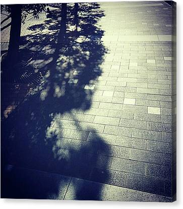 #shadow #光と影 Canvas Print by Bow Sanpo