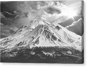 Shasta Canvas Print