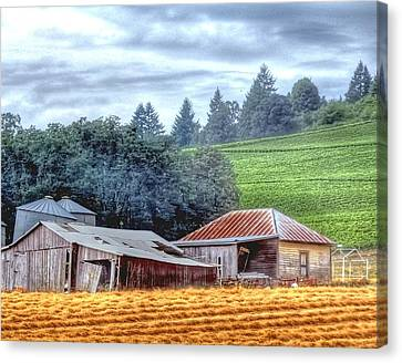Shed And Grain Bins 17238 Canvas Print by Jerry Sodorff