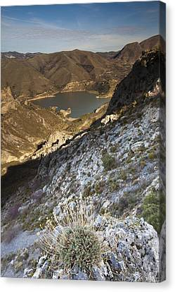 Sierra Nevada Canvas Print by Andre Goncalves