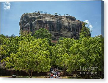 Canvas Print - Sigiriya Rock by Patricia Hofmeester