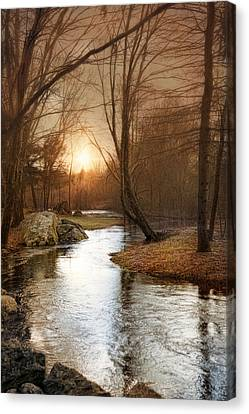 Canvas Print featuring the photograph Silence Is Golden by Robin-Lee Vieira