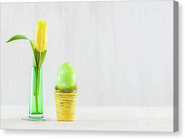 Single Easter Egg In A Pot. Canvas Print by Michal Bednarek