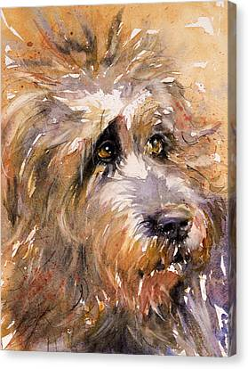 Sir Darby Canvas Print by Judith Levins