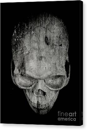 Bones Canvas Print - Skull by Edward Fielding