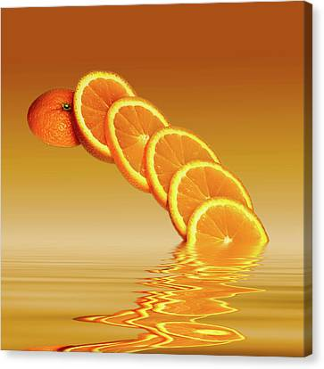 Slices Orange Citrus Fruit Canvas Print by David French