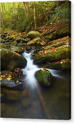 Gatlinburg Tennessee Canvas Print - Smoky Mountain Stream by Dennis Nelson