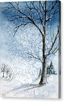 Snowy Night Canvas Print by Rebecca Davis