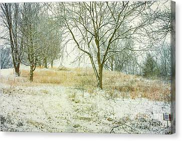 Canvas Print featuring the digital art Snowy Winter Morning by Randy Steele