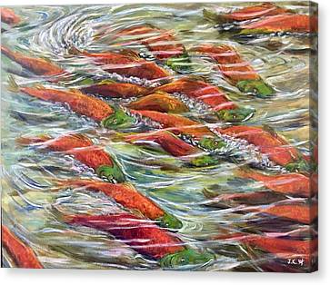 Sockeye Return Canvas Print