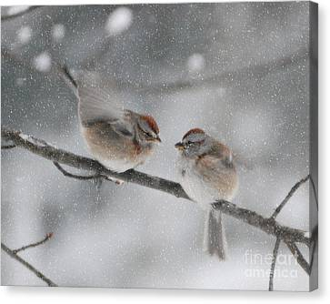 Sparrow Kiss Canvas Print by Lila Fisher-Wenzel